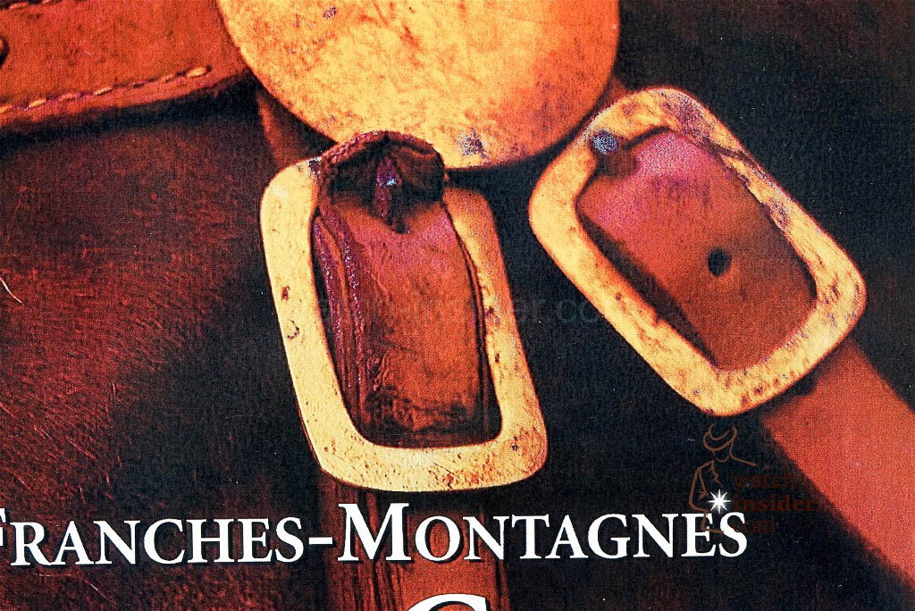 The rectangular buckle on the show bridle of the only Swiss horse breed, the Franches-Montagnes